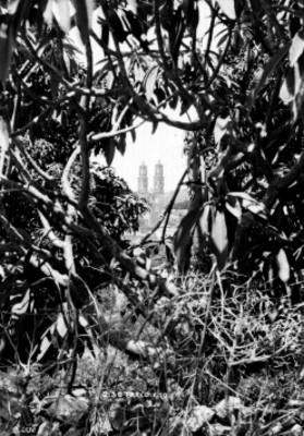 Parroquia de Santa Prisca entre los árboles