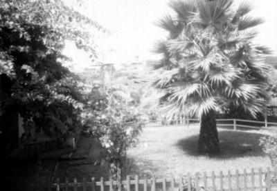 Jardín del Rancho Amanalco, al fondo el Palacio de Cortés