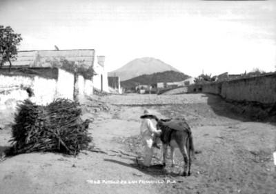 Niño indígena junto a un asno en una calle del pueblo