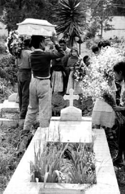 Hombre con el féretro sobre la cabeza en el cementerio