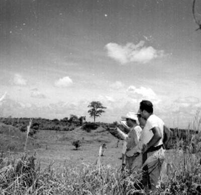 Arqueológos observan los montículos durante una expedición