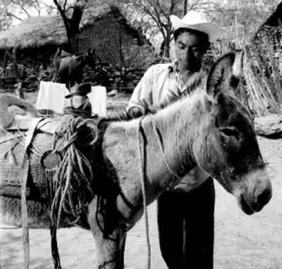 Eusebio Abasolo ensilla un caballo