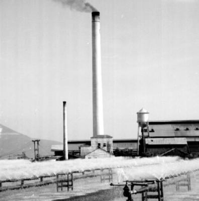 Sistemas de riego funcionando en el ingenio azucarero Xicohténcatl