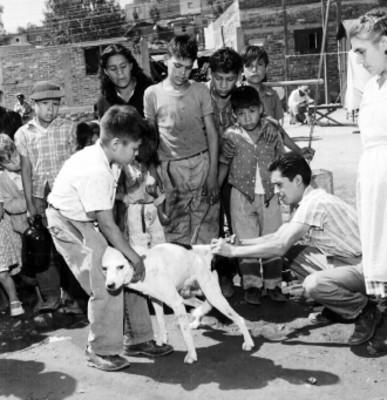 Niños observan vacunar a perro