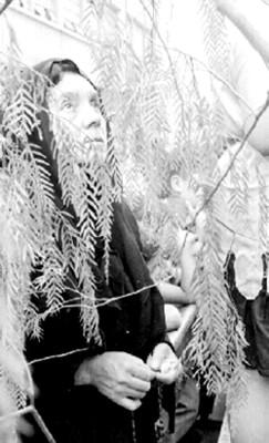 Mujer interpreta a María durante la Pasión de Cristo
