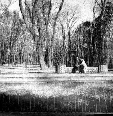 Pareja sentada en la banca de un jardín