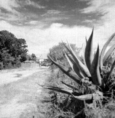 Entrada del rancho Ijiní
