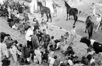 Sacerdote y niño durante la ceremonia de bendición de animales