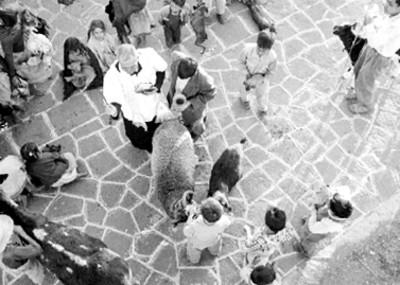 Sacerdote y niño durante la bendición de animales en Mixquic