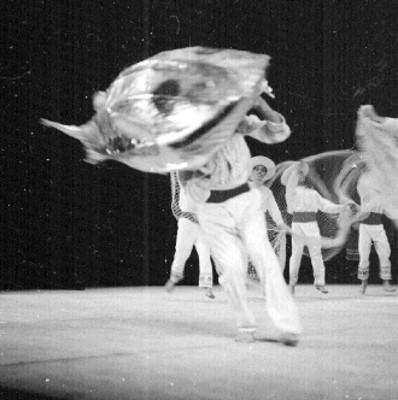 Bailarines del Ballet Popular presentan coreogafía Redes