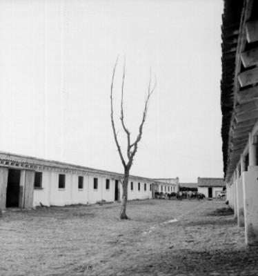 Establo del rancho Asunción, vista parcial