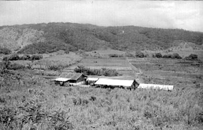 Granja y campos de cultivo, panorámica