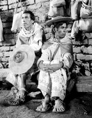 Coras y Huicholes