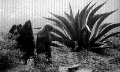 Mujeres frente a una tumba en un cementerio