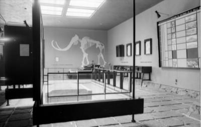 Vista parcial de una sala en el museo prehistórico de Tepexpan