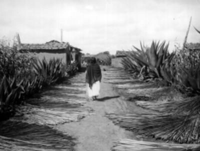 Mujer indígena camina por la calle de un poblado