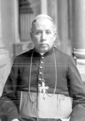 Vicente Castellanos y Núñez, obispo de Tulancingo, retrato