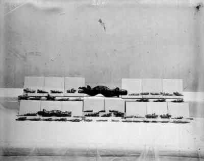 Figuras prehispánicas exhibidas en un museo
