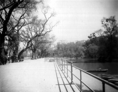 Vista parcial del lago de Chapultepec