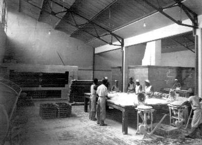 Grupo de panaderos en la elaboración de pan