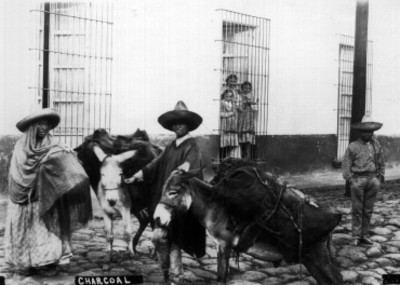 Pareja de hombre y mujer transitan sobre la calle con burros cargados