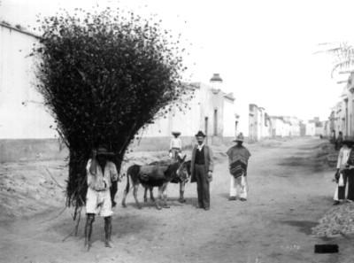 Hombre carga forraje con mecapal sobre una calle, reprografía