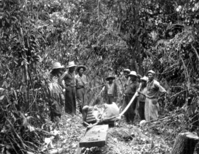 Trabajadores remueven fuente en forma de ave, San Lorenzo Tenochtitlán