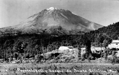 Popocatépetl y bosque de Santa Catalina