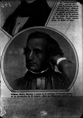 William Henry Harvey, doctor que se le atribuye el descubrimiento de la circulación de la sangre, litografía, retrato