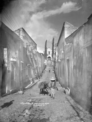 "Hombre con animal de carga transitan por la ""Calle de Tepetalco"""