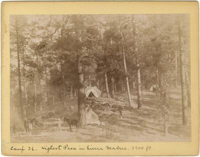 """Campamento en el paso más alto de la Sierra Madre, """"Camp 36. Highest Pass in Sierra Madres"""""""