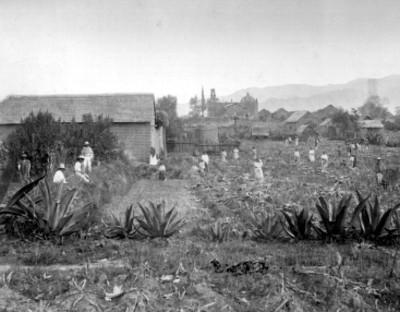 Poxtla, pueblo del municipio de Ayapango