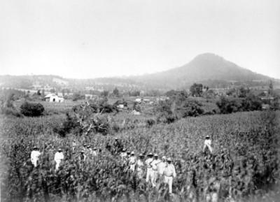 Cuecuatitla, pueblo del municipio de Tepetlixpa