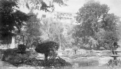 Jardines de Chapultepec, 5614. The Gardens of Chapultepec
