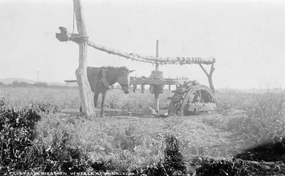 5677. Irrigation wheels at Ahualalco