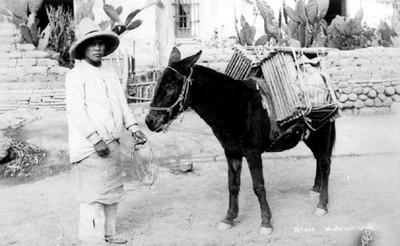 """Arriero y """"mula con carga"""""""