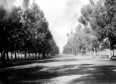 """""""Paseo de la Reforma"""", vista general"""