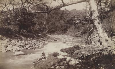 Hombre junto a río