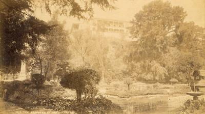 """Bosque de Chapultepec. """"5614. The gardens of Chapultepec"""""""