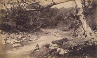 Hombre a orillas de un río