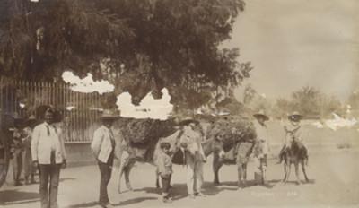 """""""Olleros"""", con sus mulas en un pueblo"""