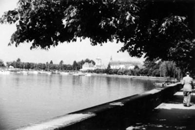 Lausana, Suiza, el Lago Leman desde la Ave. Ouchy del Parque Denanton
