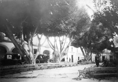 Jardín, vista parcial
