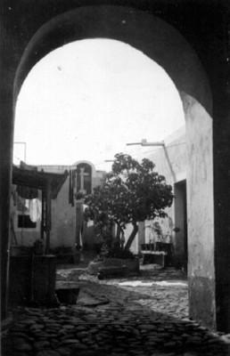 Vista de un patio con lavadero y arboles