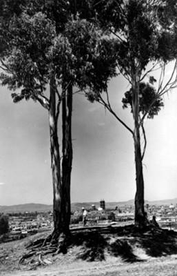 Hombres frente a vista panorámica de la Ciudad de Puebla