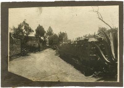 Vista de un camino delimitado por casa de adobe