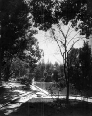 """Vista del """"parque Teresa en Tacubaya"""""""