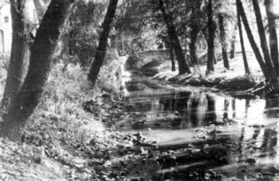 Cause del rio Chimalistac que cruza una casa y un puente