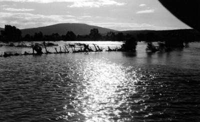 Afectados por la inundación en Jaral del Río