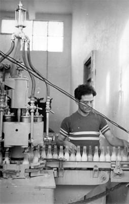 Trabajador de embotelladora revisando las botellas